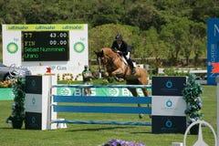 equestrian międzynarodowy doskakiwania przedstawienie Fotografia Royalty Free