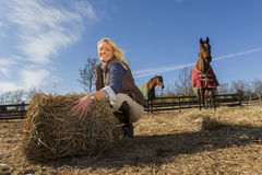 Equestrian Model and Horses. A blonde equestrian model feeds her horses in an outdoor environment Stock Image