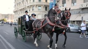 Equestrian parade of historic carriages - Naples IT stock video