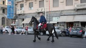 Equestrian parade of historic carriages - Naples IT stock video footage