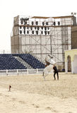 Equestrian performs on March 23, 2012 in Bahrain Royalty Free Stock Image