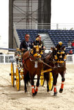 Equestrian performs on March 23, 2012 in Bahrain Royalty Free Stock Photos