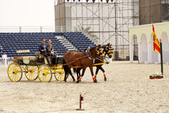 Equestrian performs on March 23, 2012 in Bahrain Stock Image
