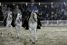Equestrian performs on March 26, 2012 in Bahrain Royalty Free Stock Photos