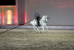 Equestrian performs on March 26, 2012 in Bahrain Stock Image