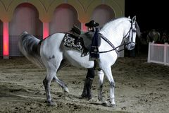 Equestrian performs on March 26, 2012 in Bahrain Royalty Free Stock Images