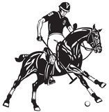 Equestrian polo player on a black pony horse Royalty Free Stock Photography