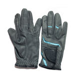 Equestrian profesjonalisty popielate rękawiczki dla jechać odizolowywam na whi Obraz Royalty Free