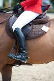 Equestrian Riding Attire Royalty Free Stock Photos
