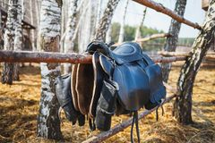 Equestrian saddle with pockets hanging on the fence at the stud farm stock photos