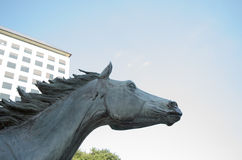 Equestrian sculpture in modern urban office building park. Sculpture of wild mustang horse in William Square, Irving TX Stock Photography