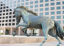 Equestrian sculpture at office building. Williams Square in  Irving Texas urban office building with wild mustang horse sculptures Royalty Free Stock Photo