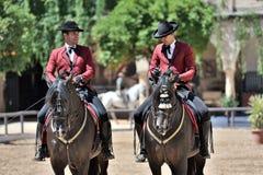 Equestrian show, Cordoba, Spain Royalty Free Stock Photos
