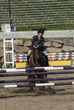Equestrian show - horse stop at hurdle Royalty Free Stock Photo