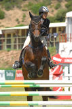 Equestrian Show Jumping. Vimeiro Equestrian Show Jumping - XV International Show Jumping (POR) 24-27Jul2008 Rider-Teresa Fortunato, POR ;Horse-Calista Stock Photography