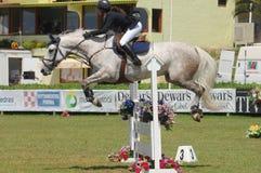 Equestrian Show Jumping. Vimeiro Equestrian Show Jumping - XV International Show Jumping (POR) 24-27Jul2008 Rider-Marina Frutuoso de Melo, POR ;Horse-Vichy Royalty Free Stock Image