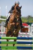 Equestrian Show Jumping. Vimeiro Equestrian Show Jumping - XV International Show Jumping (POR) 24-27Jul2008 Rider-Matilde Almiro, POR ;Horse-Vitivio Stock Photography