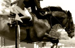 Equestrian Show Jumping Close-up #2 (Sepia)). Tight close-up image of horse & rider clearing a jump in an equestrian showjumping event #2 (soft focus, sepia tone royalty free stock images