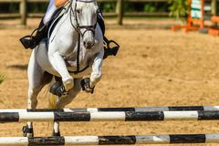 Horse Rider Unidentified Jumping Closeup Abstract Poles stock images