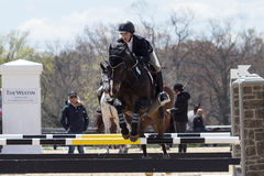 Equestrian Show Jumping. A rider takes her horse over a set of hurdles during an  annual show jumping event at Princeton New Jersey Royalty Free Stock Photos