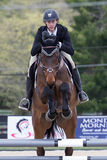 Equestrian Show Jumping. A rider takes his horse over a set of hurdles during an  annual show jumping event at Princeton New Jersey Stock Images