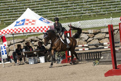 Equestrian show Royalty Free Stock Images