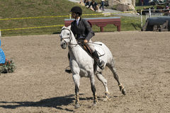 Equestrian show Stock Image