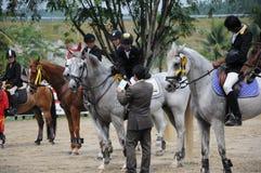 Equestrian Showjumping 3Q Classic Stock Photo
