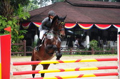 Equestrian Showjumping 3Q Classic Stock Image
