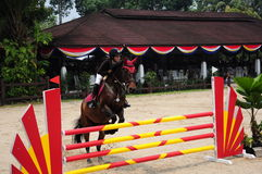 Equestrian Showjumping 3Q Classic Stock Photography