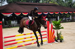 Equestrian Showjumping 3Q Classic Royalty Free Stock Images