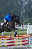 Equestrian showjumping - STC Horse Show 2013 stock image