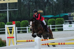 Equestrian showjumping - STC Horse Show 2013 Royalty Free Stock Photo