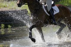 Equestrian Splashing. Equestrian Rider & Horse Splash Through A Water Obstacle During A Competition royalty free stock photography