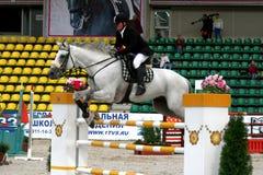 equestrian sport Obrazy Stock