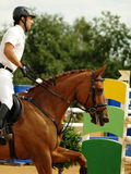 equestrian sport Zdjęcia Royalty Free