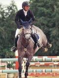 Equestrian sport Royalty Free Stock Photos