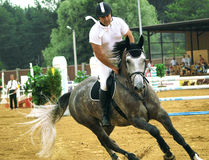 equestrian sport Fotografia Royalty Free