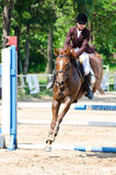 Equestrian sport. Royalty Free Stock Images