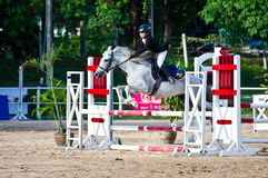 Equestrian sport. Royalty Free Stock Image
