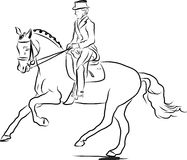 Equestrian sport - dressage Stock Images