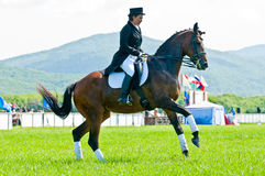 Equestrian sport. Female dressage rider Royalty Free Stock Image