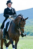 Equestrian sport. Female dressage rider Stock Photo