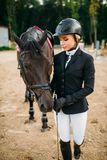 Equestrian sport, female jockey and horse. Brown stallion, horseback riding, leisure with animal Royalty Free Stock Photo