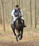 Equestrian sport,galloping horse Royalty Free Stock Images
