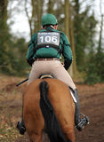 Equestrian sport,galloping horse Stock Photography