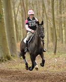 Equestrian sport,galloping horse Stock Image