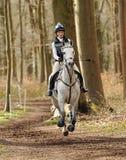 Equestrian sport,galloping horse Stock Photos