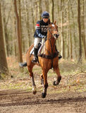 Equestrian sport,galloping horse Royalty Free Stock Photography