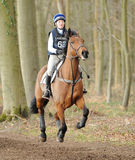 Equestrian sport,galloping horse Stock Photos